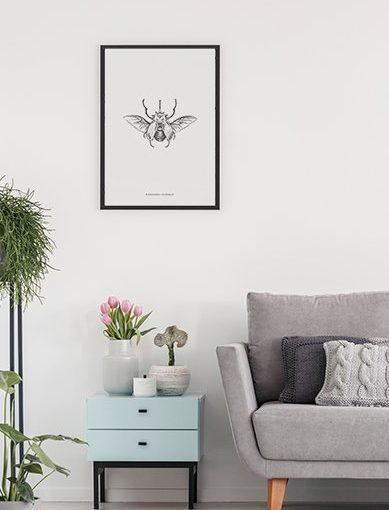 Lámina decorativa 50x70 Megasoma Elephas de la colección Insectos de Miluka decorando una estancia