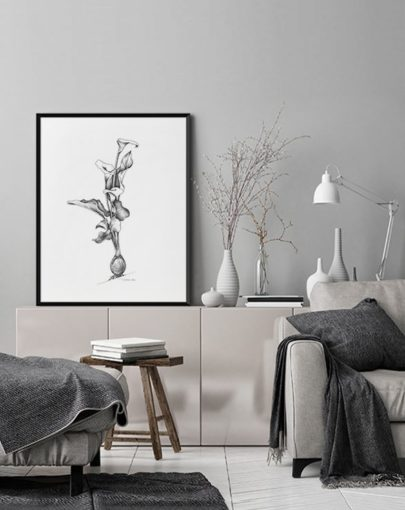 Lámina Calas de la colección de láminas decorativas grandes de Botánica de Miluka decorando una estancia