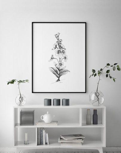 Lámina Orquídeas de la colección de láminas decorativas para dormitorios Botánica de Miluka decorando una estancia