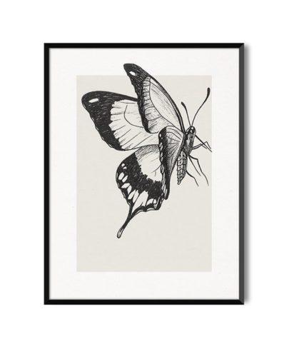 Lámina decorativa Butterfly 2 de la colección de láminas decorativas pared Butterfly con marco negro