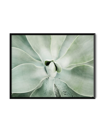 Green Lines 1 es una de las láminas de plantas de la colección Green Lines de Miluka - lámina enmarcada en marco de color negro
